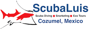 Scuba Diving in Cozumel with ScubaLuis