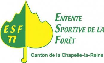 Historique de l'Entente sportive de la forêt