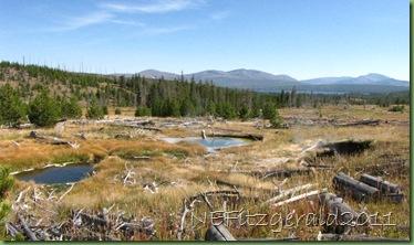 IMG_9025 MiddleGroup_ HeartLakeGeyser Basin