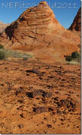 IMG_0539Iron ConcretionsAnd SandstoneBeehive