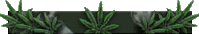 MW2 weed title background.png