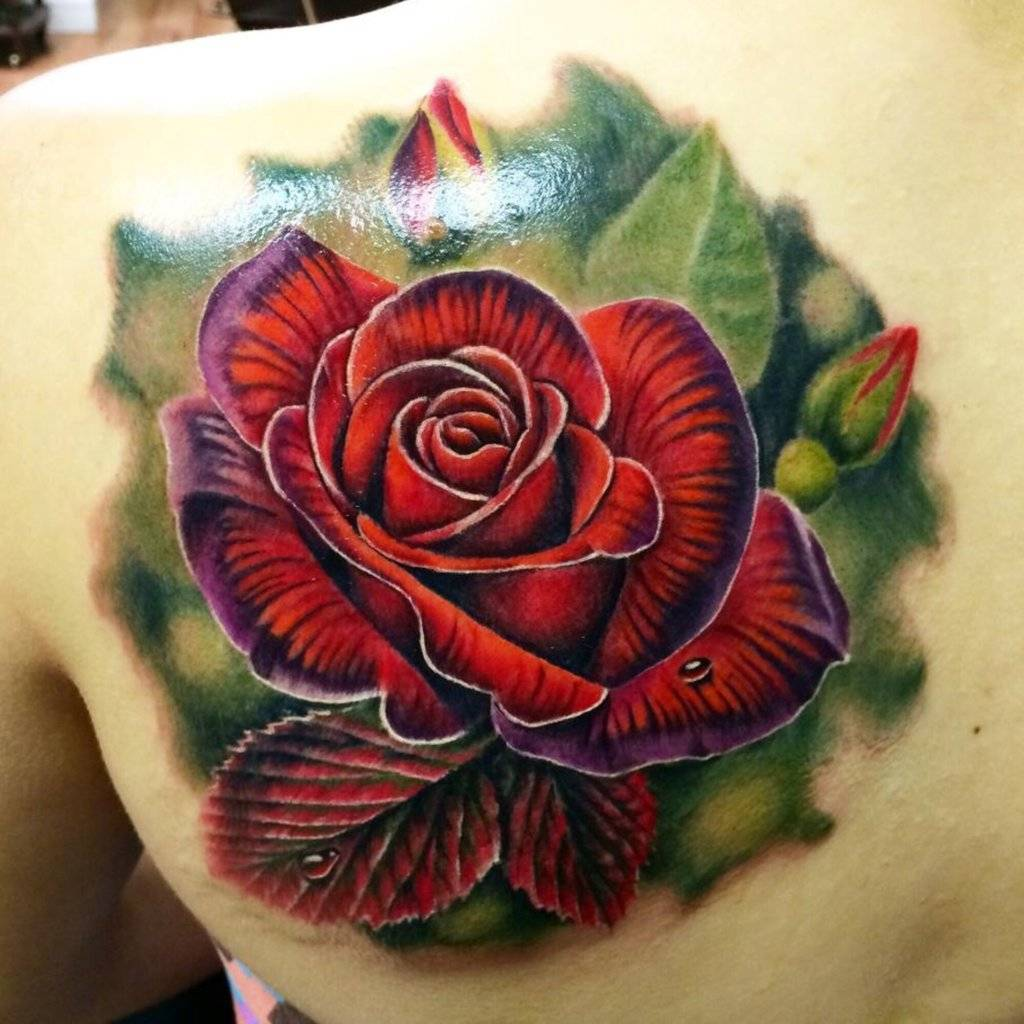 Tattoo on the shoulder blade of the girl - red rose
