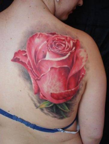 Tattoo on the shoulder blade of the girl - a large pink rose