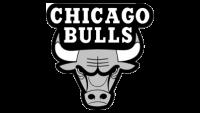 bullsgray