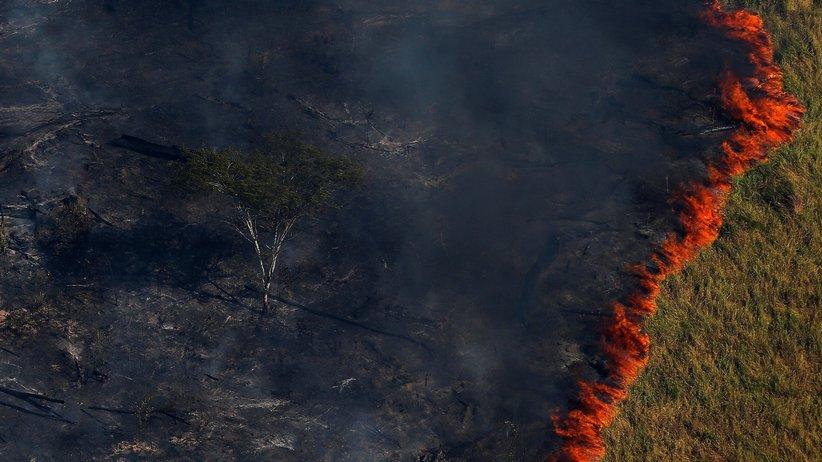 Umweltschutz: Brennender Wald in Brasiliens Amazonasgebiet