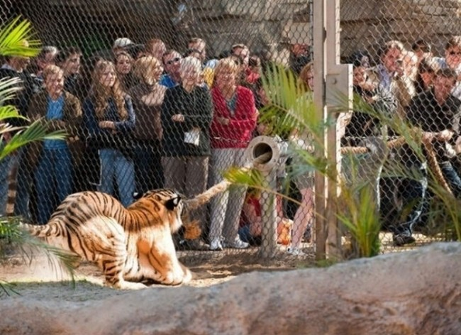 THIS ZOO MOMENT.