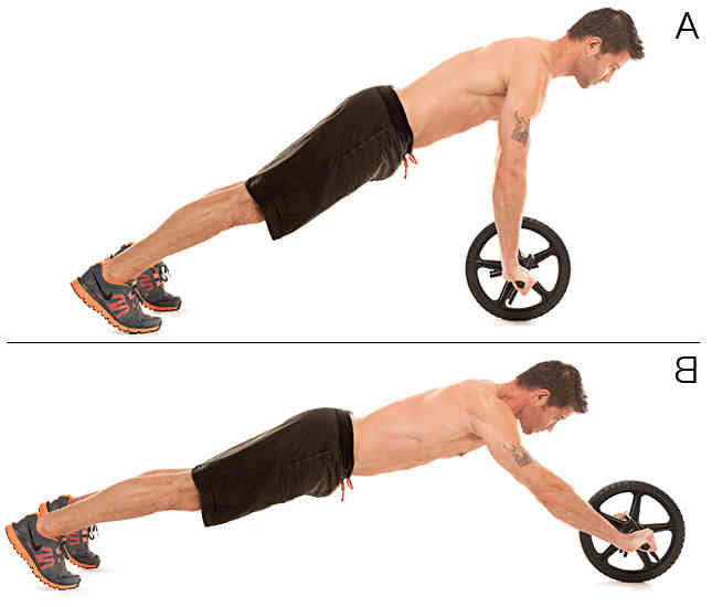 Image result for Ab Wheel Roll-outs