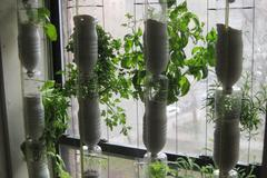 Windowfarm: for an additional gardening area inside the house