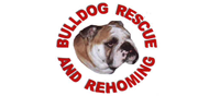 bulldog-rescue