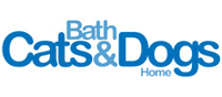 bath-cats-and-dogs