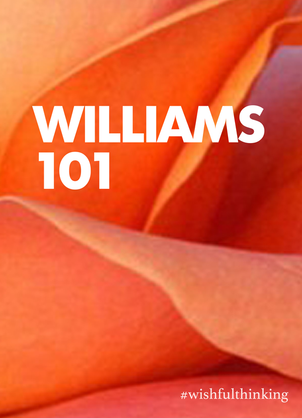 Williams 101 at the Provincetown Tennessee Williams Theater Festival