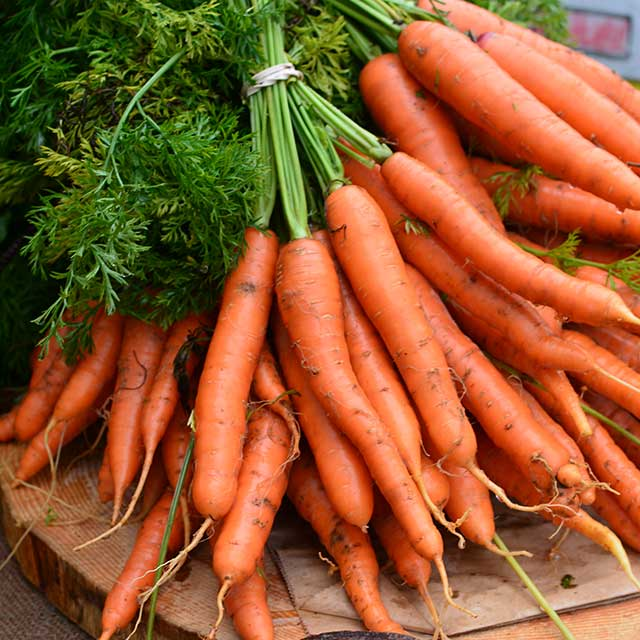 Image result for Carrot