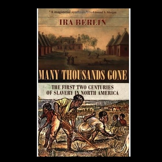 many-thousands-gone-the-first-two-centuries-of-slavery-in-north-america-books-about-slavery-nonfiction