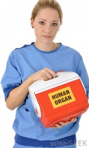woman-in-blue-scrubs-holding-human-organ-container