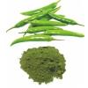 Green Chilly Powder - VINAYAK INGREDIENTS