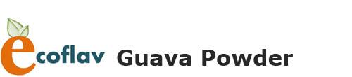 Guava Powder - Vinayak Ingredients