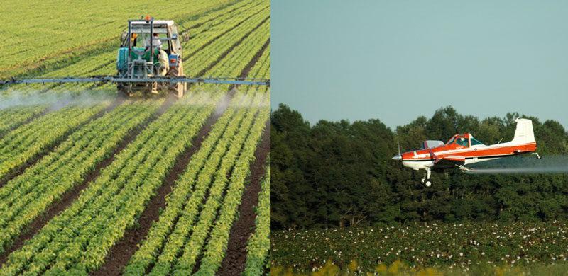 Bundesregierung streitet erneut über Pestizide