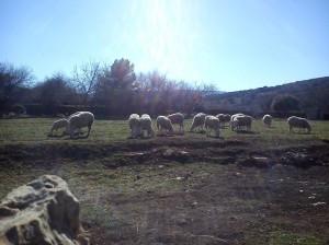 Paisajes de la Casa Rural en Castellón