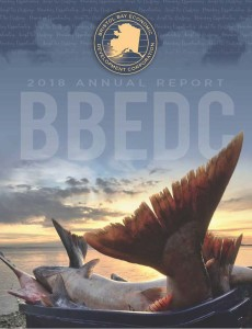BBBEDC 2018 Annual Report