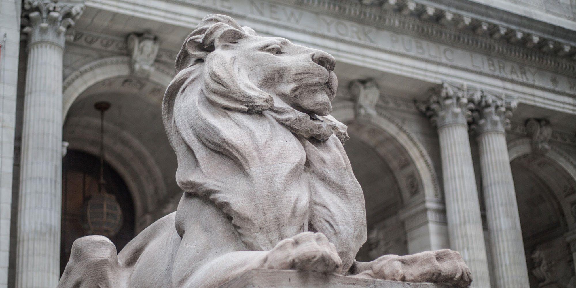 A statue of Patience the lion against the facade of NYPL