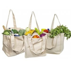 Best Reusable Grocery Bags
