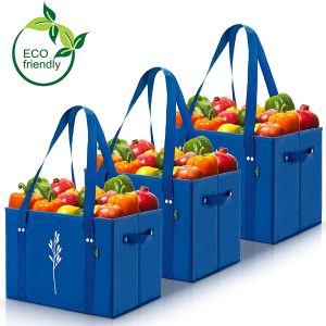 Green BD's Reusable Grocery Bags
