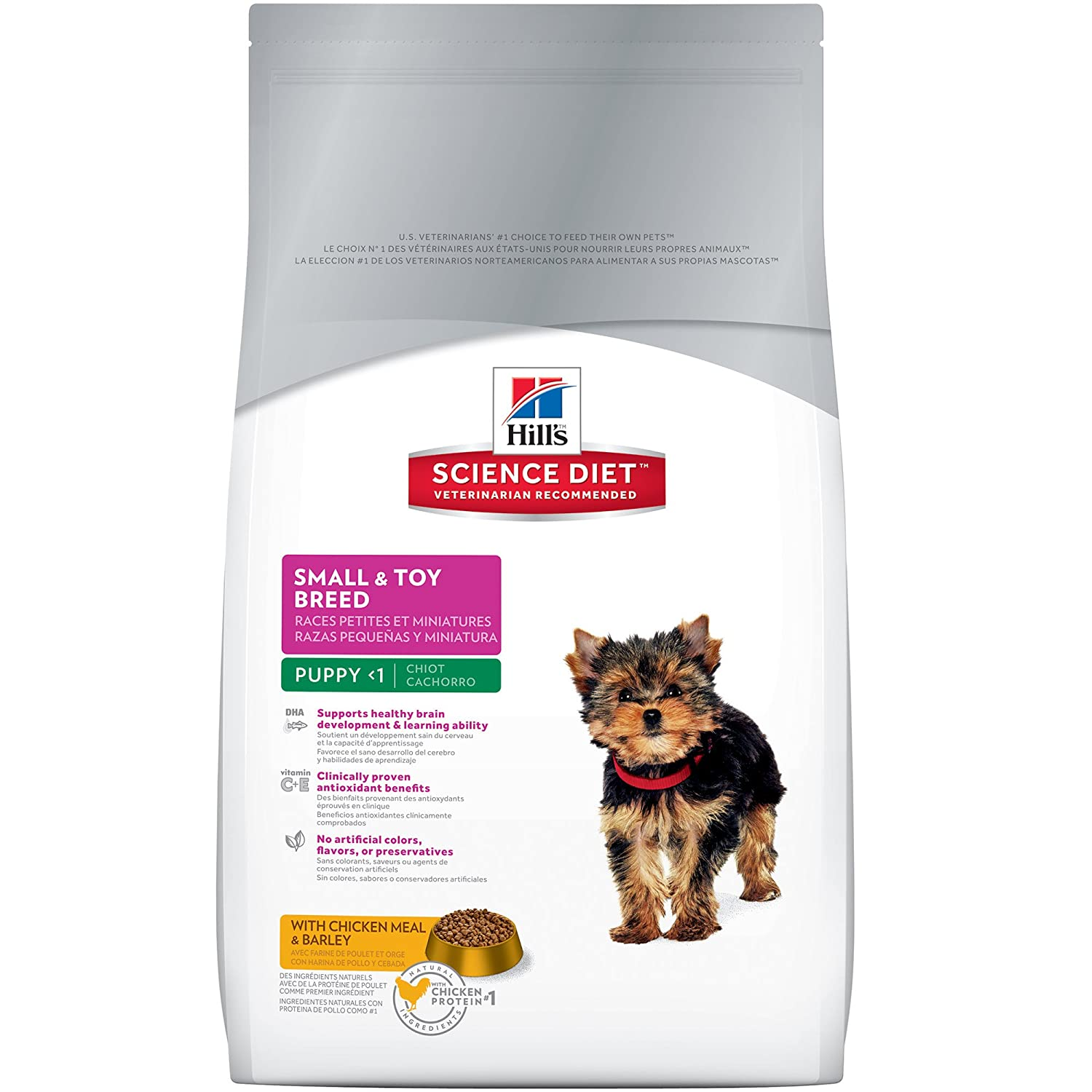 best dry food for small dogs