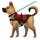 dog obedience training Sacramento