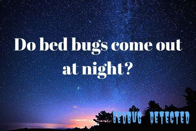 why bed bugs bite night