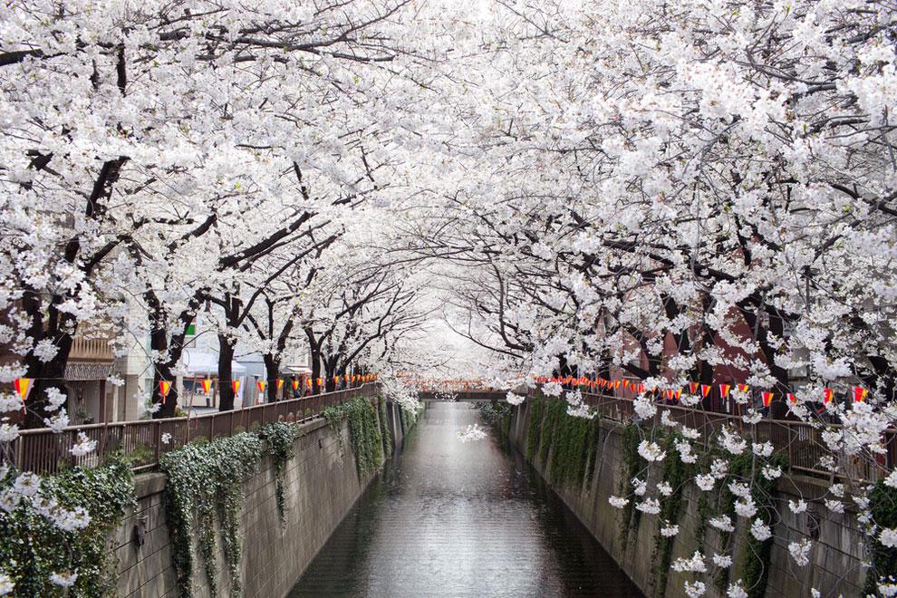Idées d'itinéraires de voyage au Japon