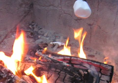 roasting marshmallow