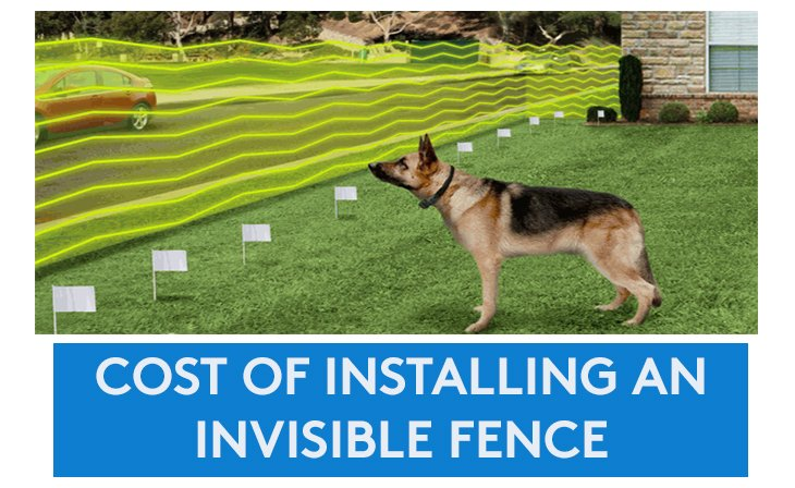 Cost of installing an Invisible Fence