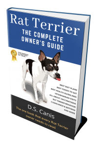 Rat-Terrier-Book-Cover-(Actual-eBook-Cover)