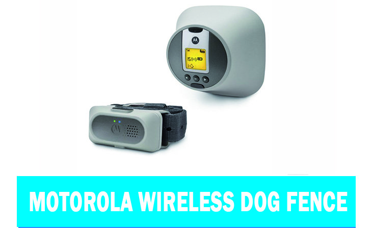 Motorola Wireless Dog Fence Review