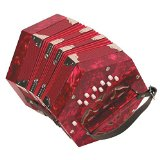 Best Affordable Accordion for Advanced Beginners