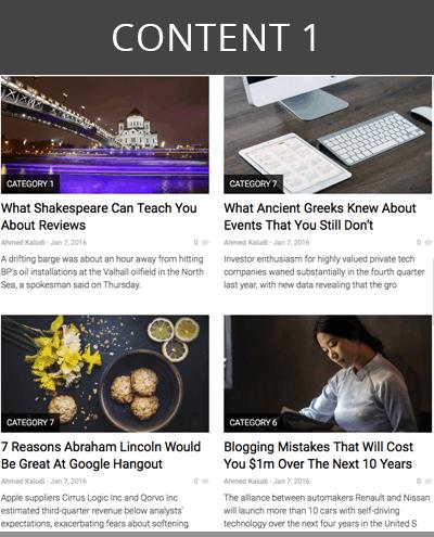skin wordpress theme content layout 1