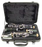 Top-Rated Plastic Clarinet for Intermediate Players