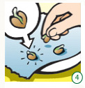 germinate-cannabis-seeds-4