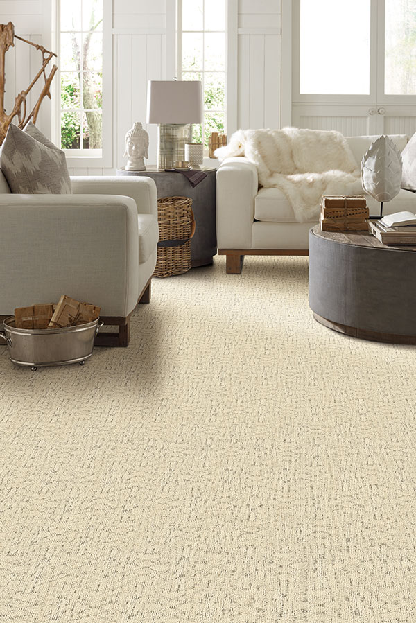 Cozy stain-resistant carpet in living room